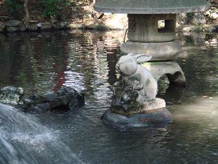 池のうさぎ.JPG